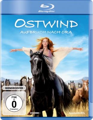 Windstorm - Ritorno Alle Origini (2017) .mkv BDRip 720p ITA WEB-DL TED AC3 DTS Subs