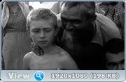 https//s19.directupload.net/images/191104/qjuq79.png