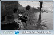 https//s19.directupload.net/images/191104/fhlfqdr6.png