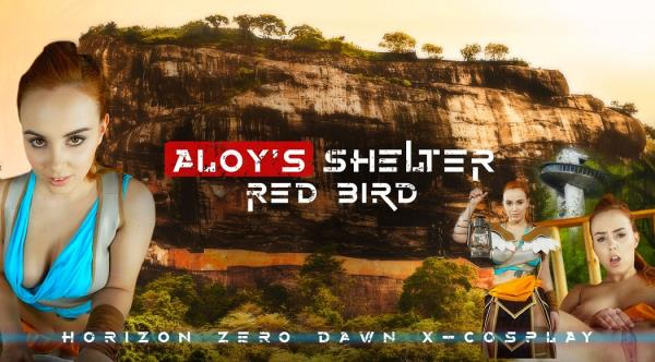 Red Bird - Aloys Shelter (2019/UltraHD 2K)