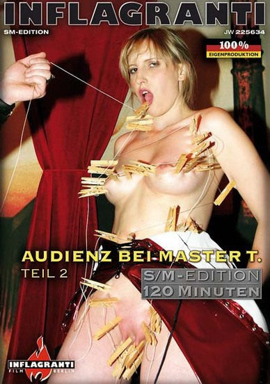 Audienz Bei Master T. Teil 2 Cover