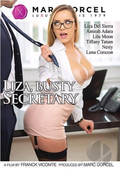 Liza Busty Secretary XXX DVDRip x264 – DigitalSin